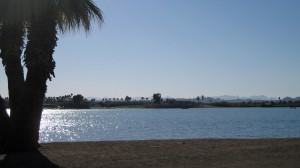 Lake Havasu from city municipal park